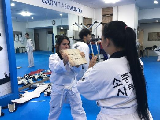 Taekwondo Class Experience